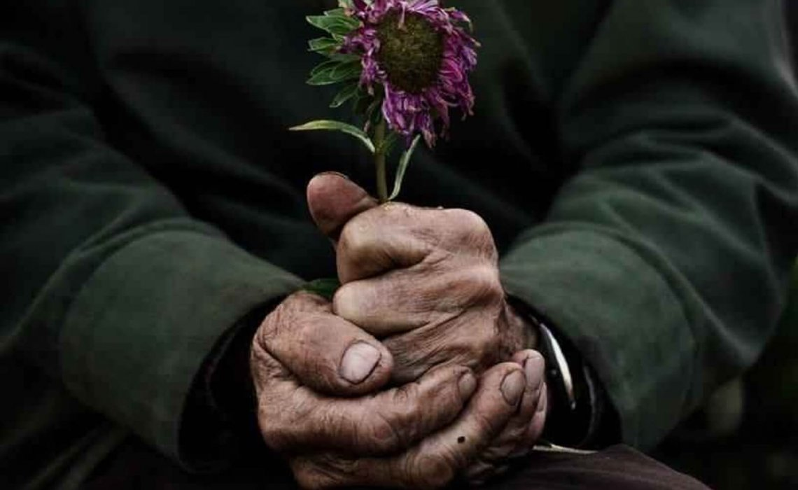 Batranul cu flori