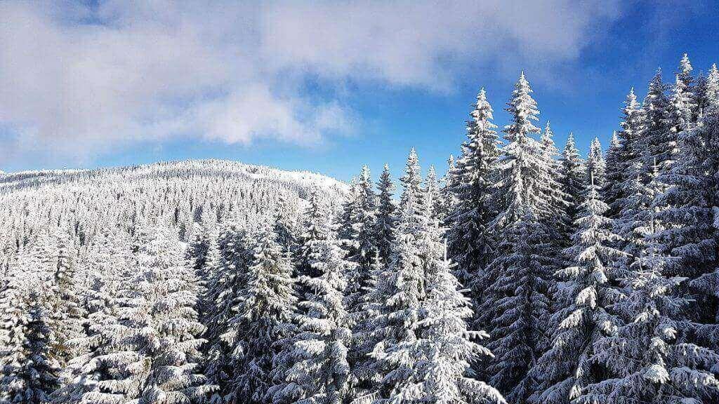 Vacanță de iarnă Kopaonik - Ana-Maria Popescu