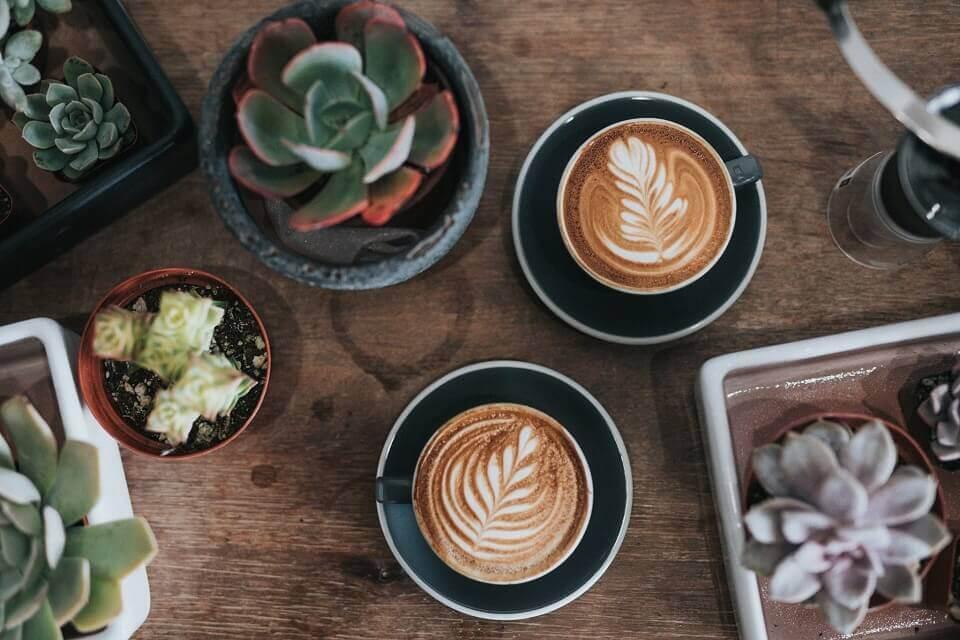 moara-cu-cafea-cafenele-de-specialitate-în-timisoara