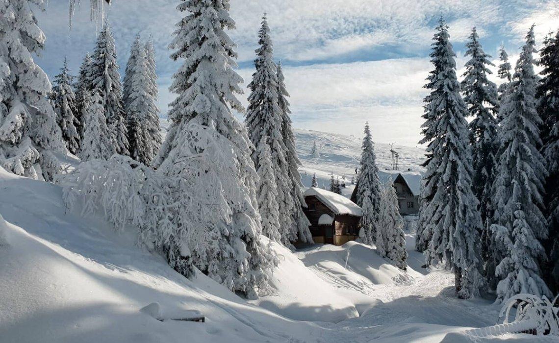 activități-pe-muntele-mic-schi-ana-maria-popescu