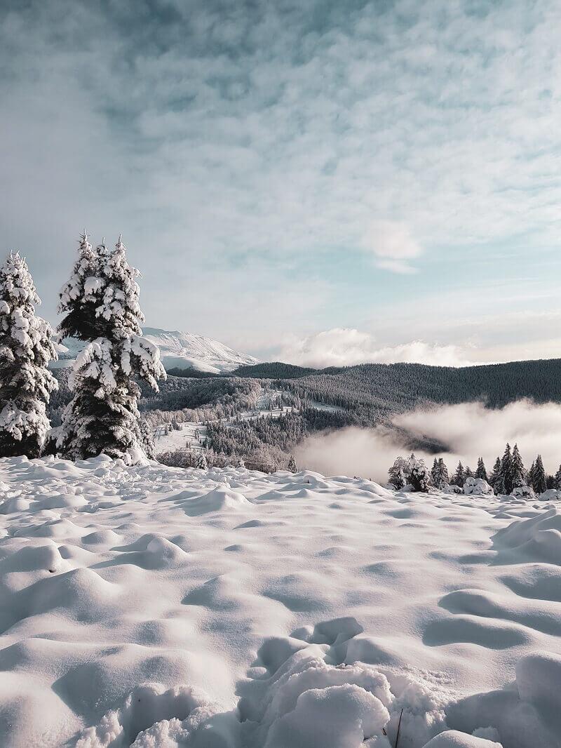 schi-pe-muntele-mic-ana-maria-popescu
